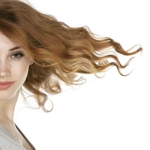 menu capelli
