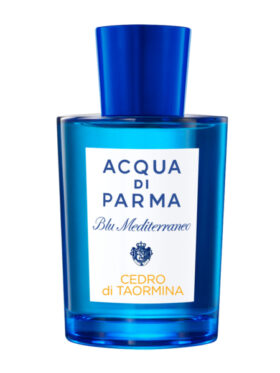 Mediterranean Blue Cedar of Taormina